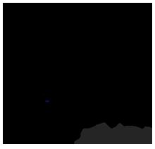 Dimona Suites Logo